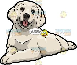Golden retriver clipart graphic black and white library A Cute Golden Retriever Pet Dog graphic black and white library