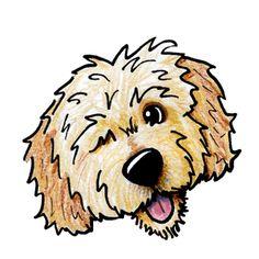 Golden doodle clipart banner transparent stock Goldendoodle Drawing | Free download best Goldendoodle Drawing on ... banner transparent stock