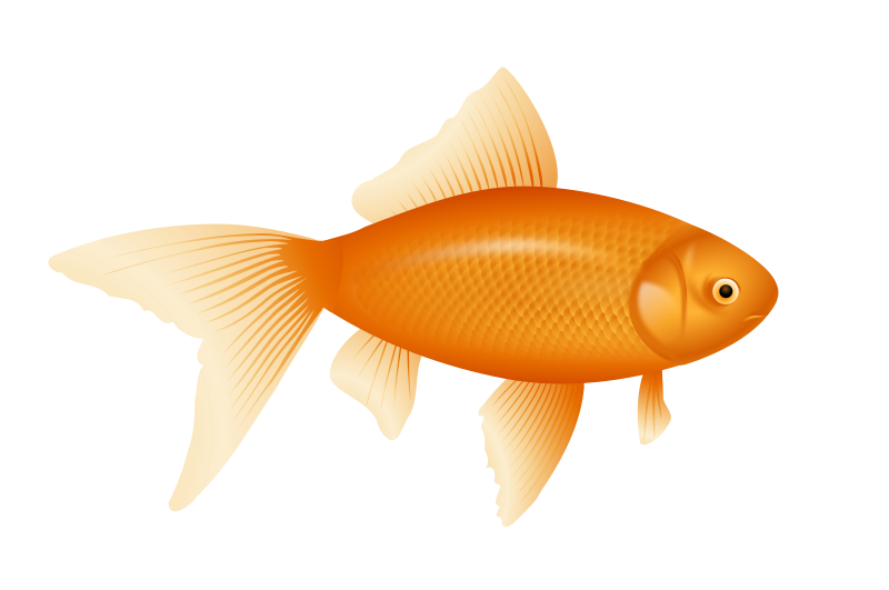 Goldfish with crown clipart stock 28+ Collection of Golden Fish Clipart | High quality, free cliparts ... stock