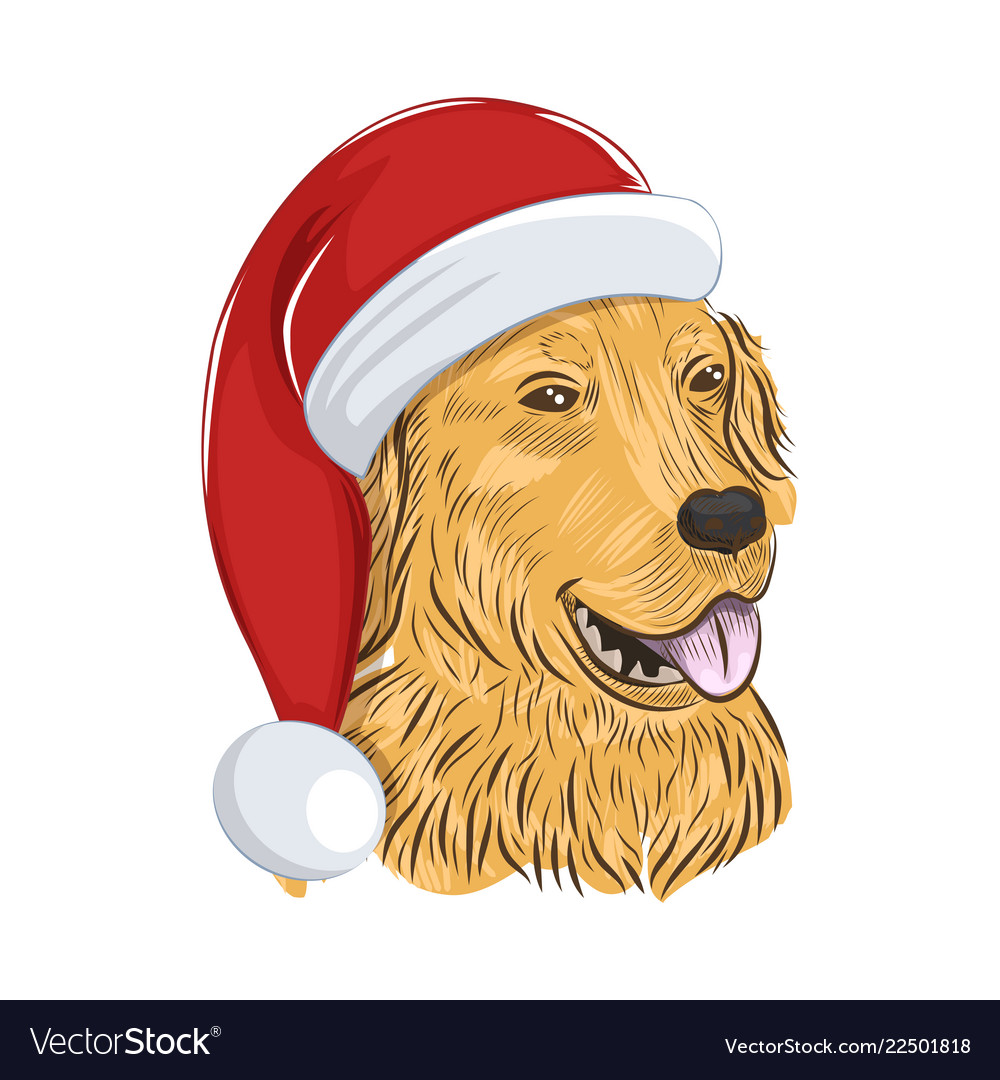 Golden retriever christmas clipart clipart royalty free stock Golden retriever wears christmas hat clipart royalty free stock