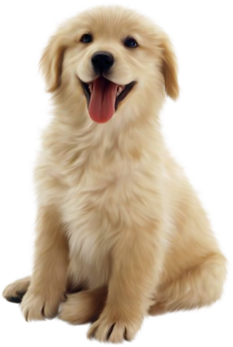 Golden retriever dog clipart jpg freeuse library 46_1.png | Places to visit | Pinterest | Animaux and Gifs jpg freeuse library