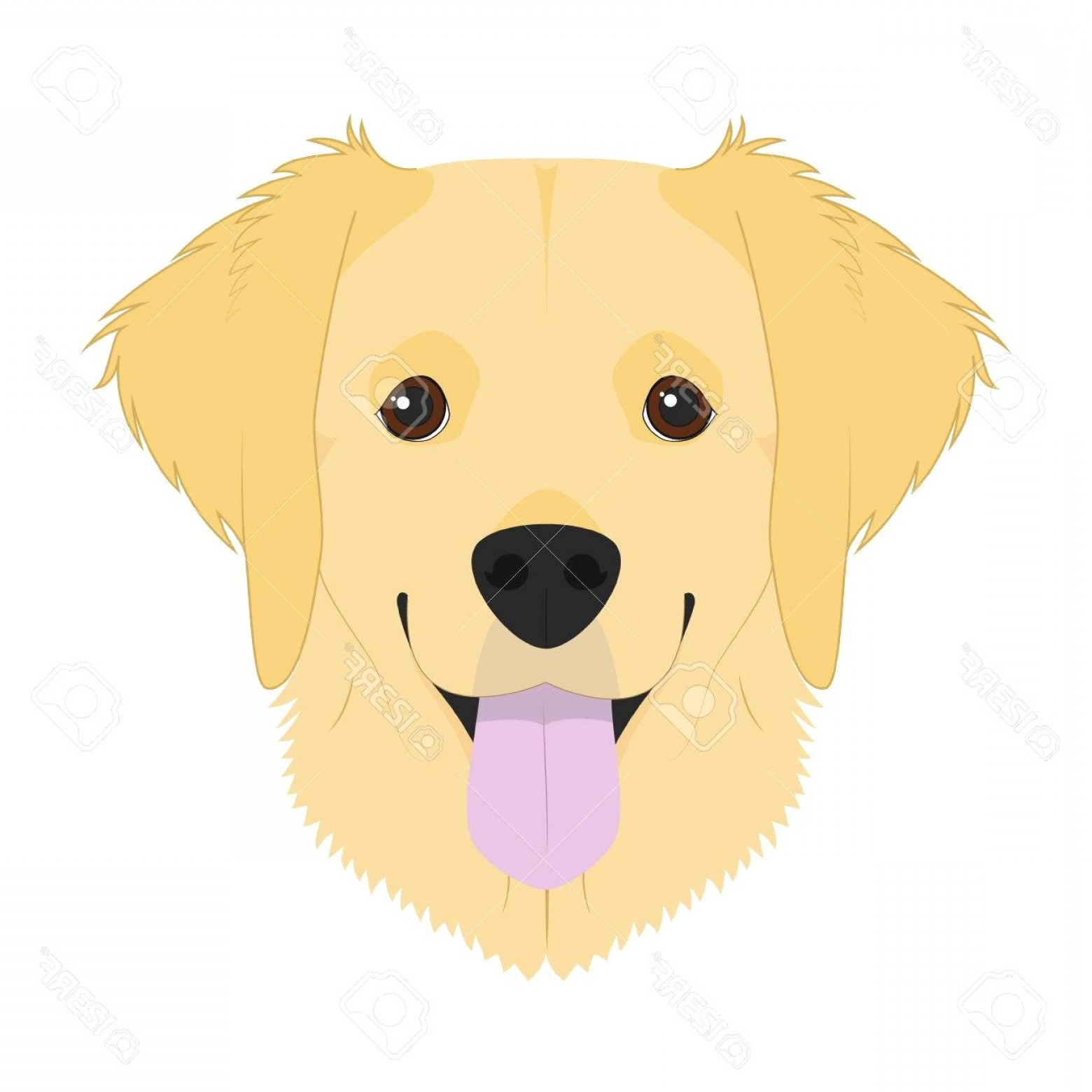 Golden retriver clipart graphic transparent library Golden Retriever Dog Isolated On White Background Vector ... graphic transparent library