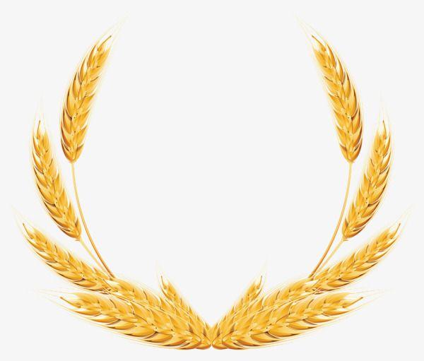 Golden wheat clipart clip free stock Golden Wheat, Golden, Trigo, Trigo Archivo PNG y PSD para descargar ... clip free stock