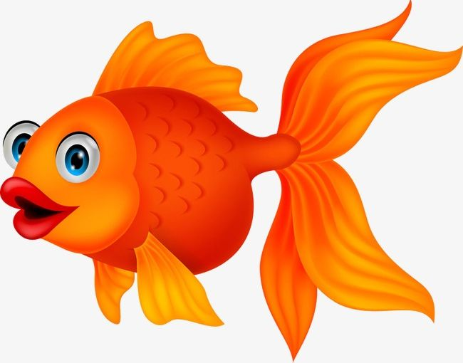 Goldfish cartoon clipart graphic freeuse stock Goldfish PNG, Clipart, Animation, Cartoon, Goldfish, Goldfish ... graphic freeuse stock