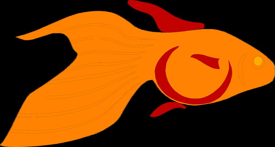 Goldfish fish clipart clip art stock Goldfish | Free Stock Photo | Illustration of a goldfish | # 6385 clip art stock