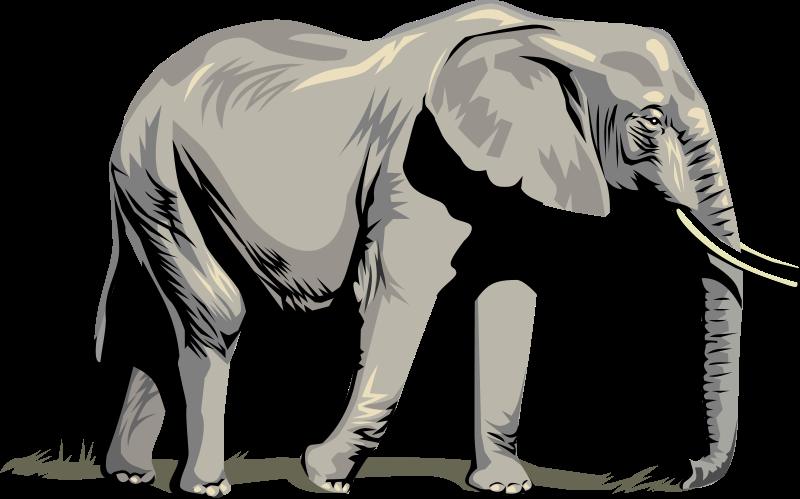 Google images elephant clipart jpg transparent download Free Elephant Clipart - Clipart Kid jpg transparent download