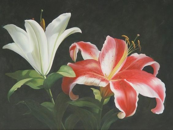 Google images lilies clip art royalty free stock oil paintings of lilies - Google Search | Art | Pinterest | Lilies ... clip art royalty free stock
