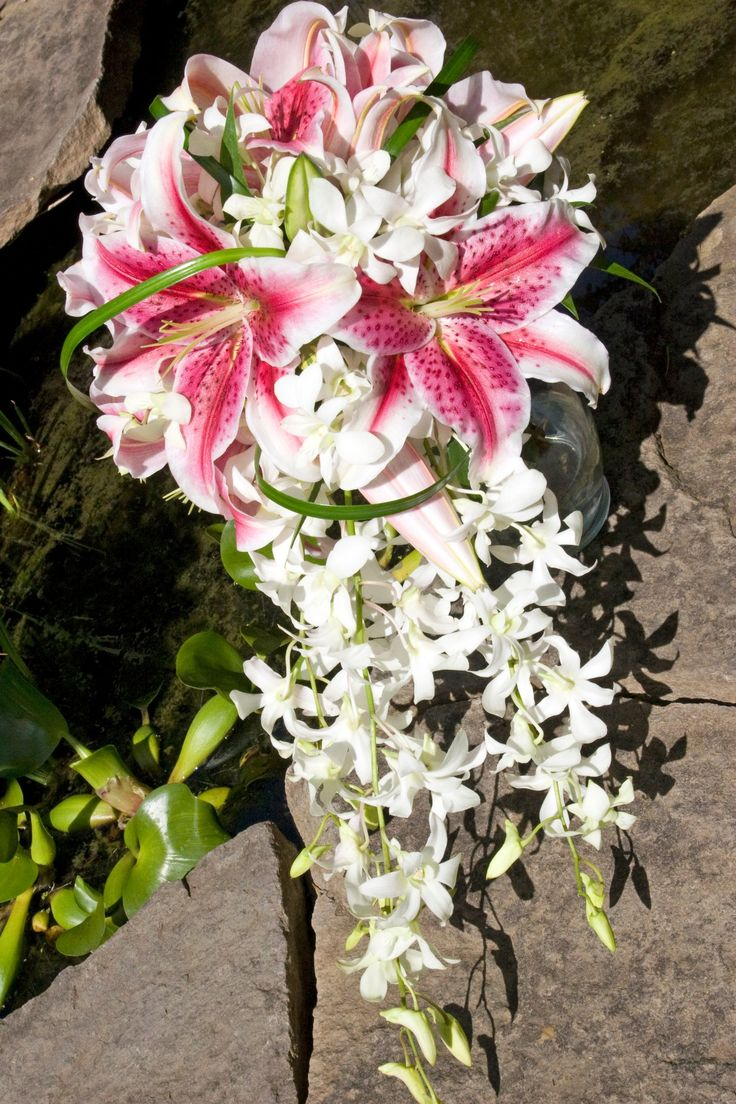 Google images lilies clip freeuse 17 Best images about Wedding on Pinterest | Cascading bouquets ... clip freeuse