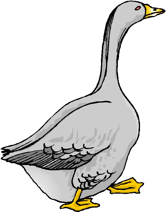 Goose images clipart clip art free Free Goose Cliparts, Download Free Clip Art, Free Clip Art on ... clip art free