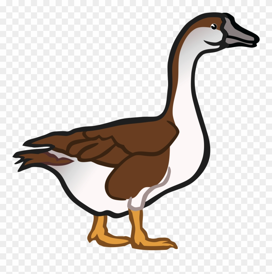 Goose images clipart clip art library library Free Clipart Of A Goose - Goose Clipart - Png Download (#539402 ... clip art library library