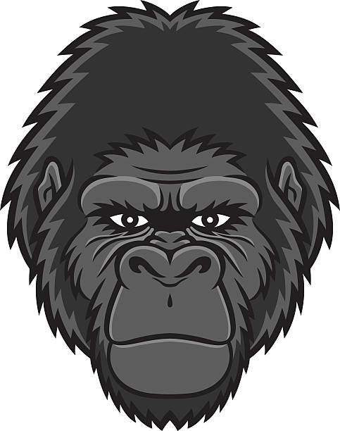 Gorilla face clipart banner library download Gorilla face clipart 5 » Clipart Station banner library download