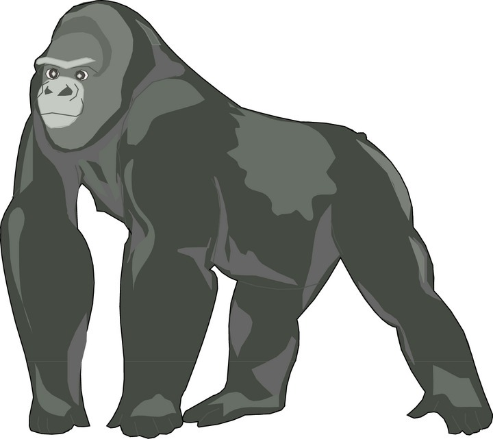 Gorilla images clipart png free download Free Images Gorilla, Download Free Clip Art, Free Clip Art on ... png free download
