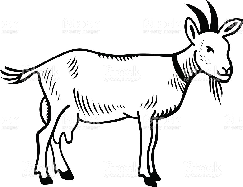 Gout clipart black adn white old fashioned clip black and white stock Goat Clipart Black And White | Free download best Goat Clipart Black ... clip black and white stock