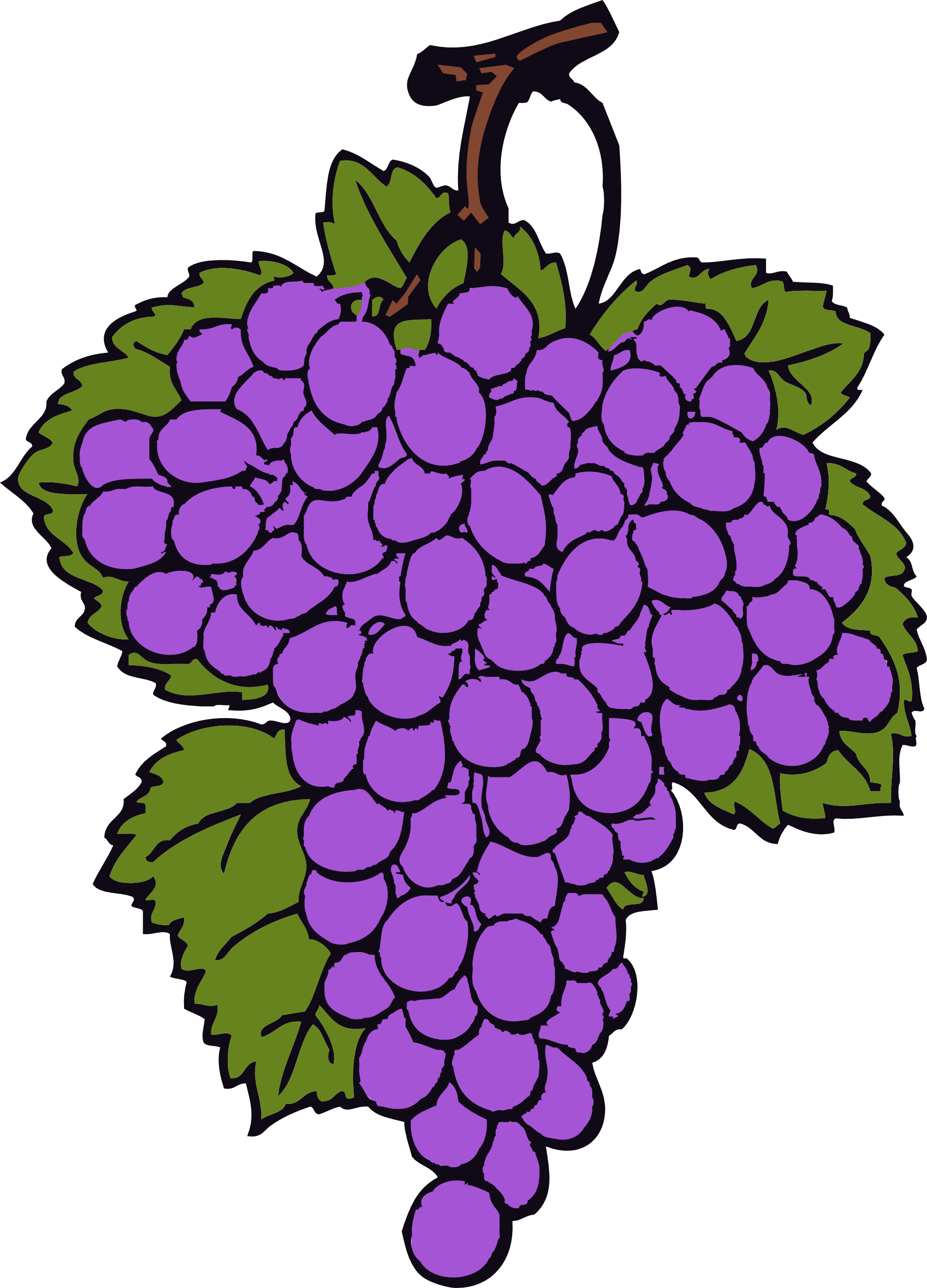 Graapes clipart banner royalty free download Best Grapes Clipart #13285 - Clipartion.com banner royalty free download