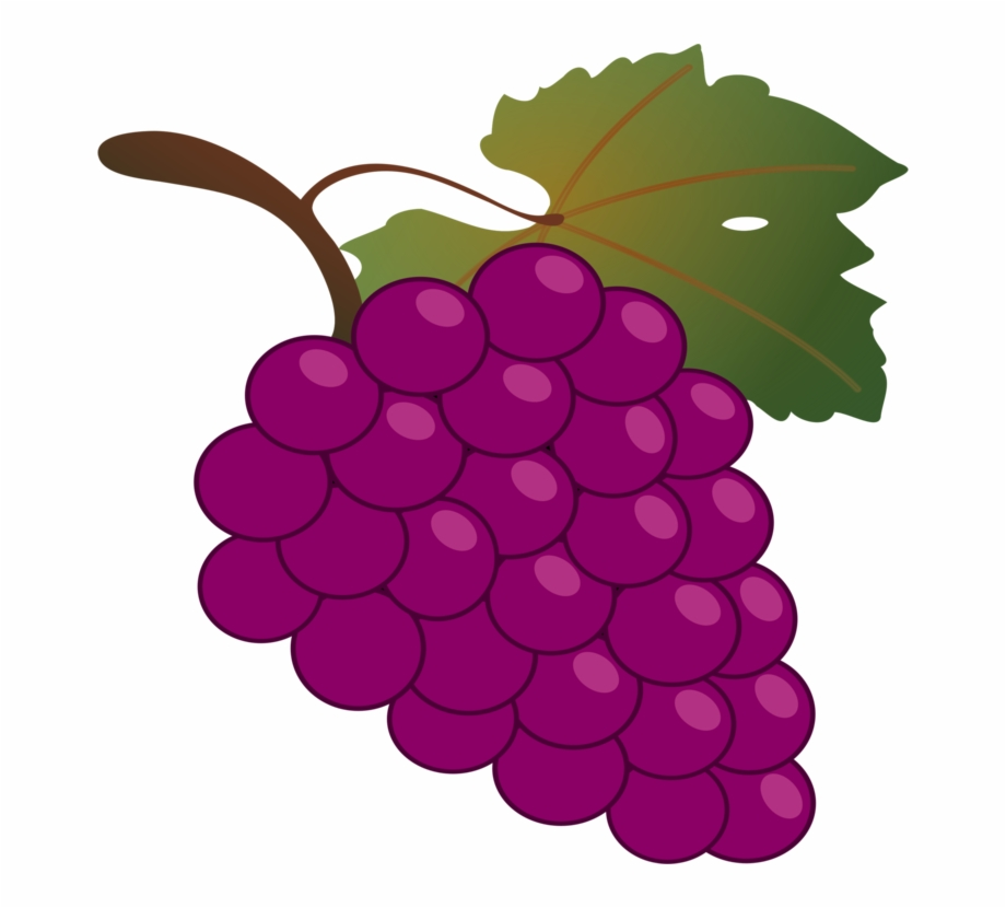 Graapes clipart jpg freeuse Grape Kyoho Wine - Grapes Clipart Free PNG Images & Clipart Download ... jpg freeuse