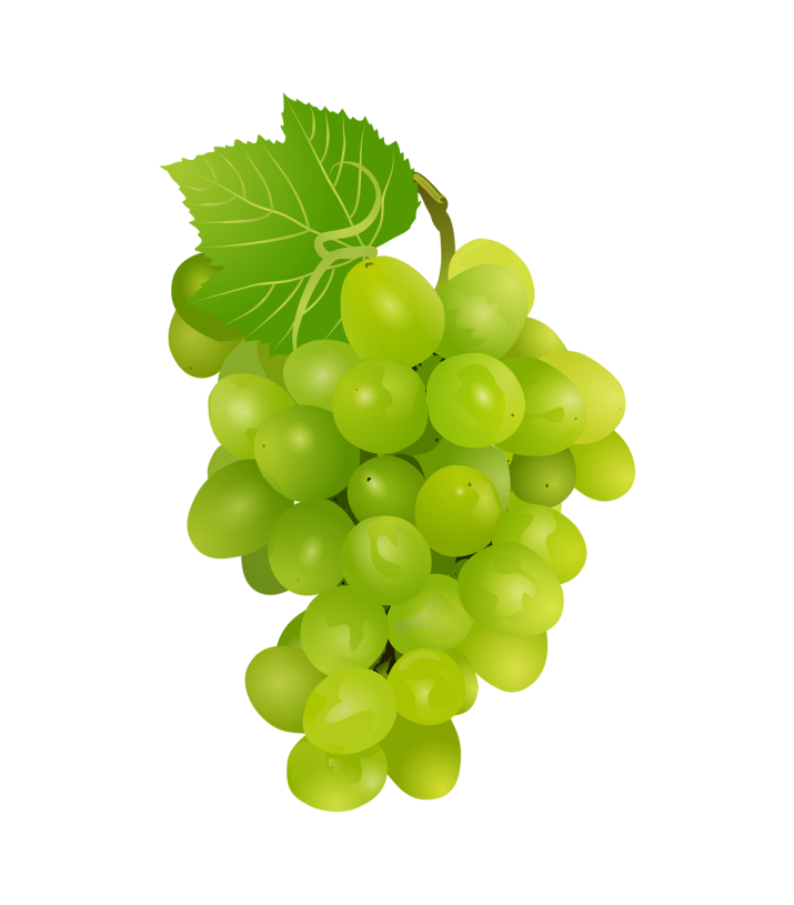 Graapes clipart clip art library download Grapes-Clipart PNG | HD Grapes-Clipart PNG Image Free Download clip art library download