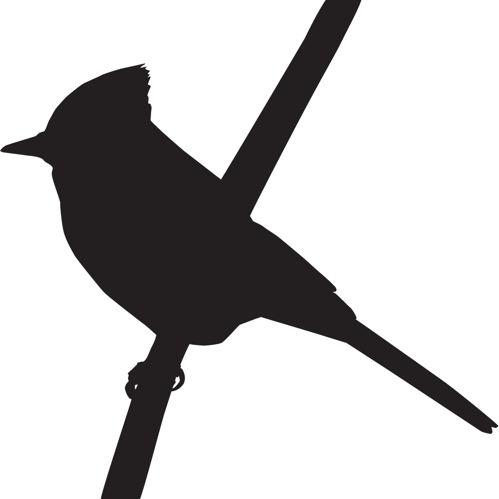 Grackle clipart clipart royalty free library Bird,Beak,Hummingbird,Clip art,Boat tailed Grackle,Wing,Silhouette ... clipart royalty free library