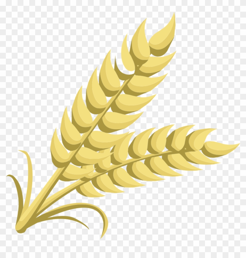 Grain clipart image free Clipart - Clipart Of Grain, HD Png Download - 825x800(#368603) - PngFind image free