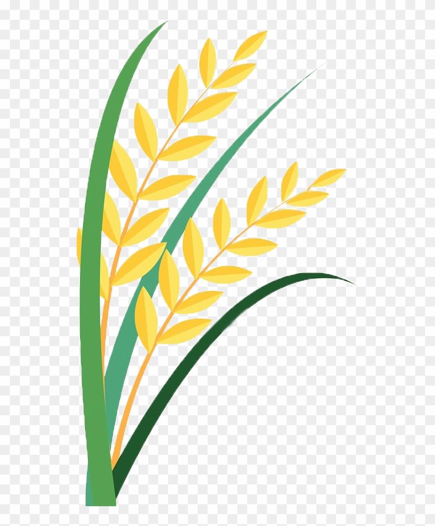 Grain clipart svg free download Grain Clipart Paddy - Clip Art - Png Download (#449588) - PinClipart svg free download