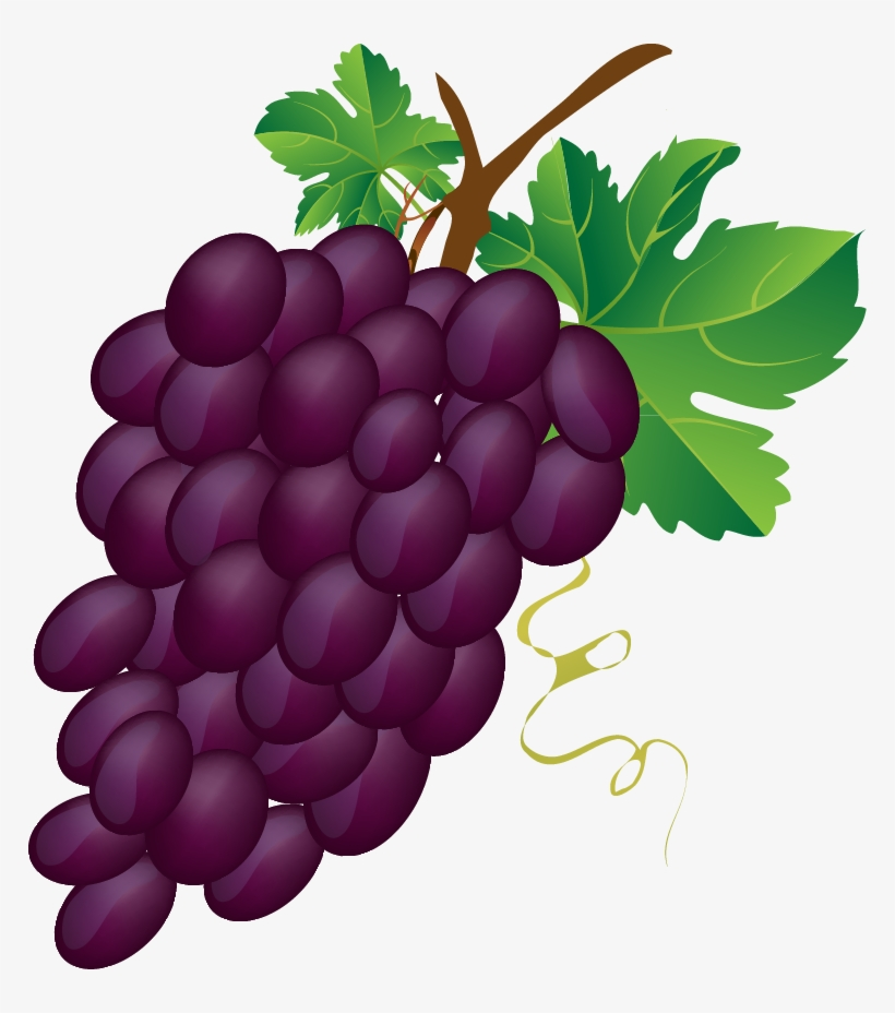 Grap clipart picture free library Grapes Vector Grape Bunch - Bunch Of Grapes Clipart - Free ... picture free library
