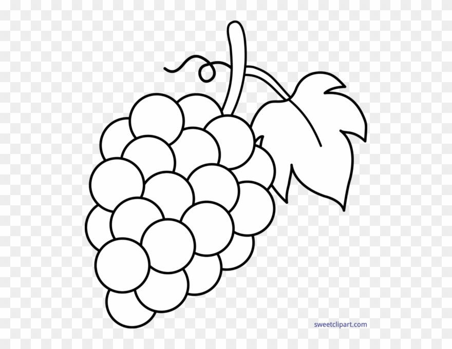 Grap clipart svg freeuse stock Grape Clipart Black And White - Grapes Clipart Black And White - Png ... svg freeuse stock