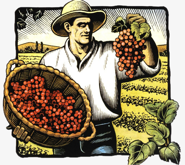 Grape farmer clipart banner freeuse stock Grape Farmer Png & Free Grape Farmer.png Transparent Images #9472 ... banner freeuse stock