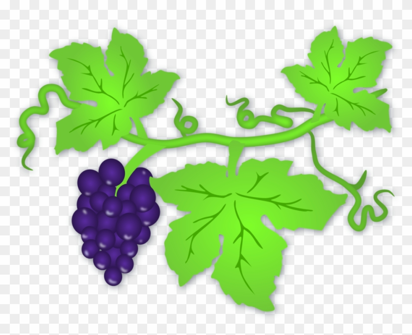 Grape Leaf - Clip Art Grape Leaves, HD Png Download - 800x614 ... picture library download