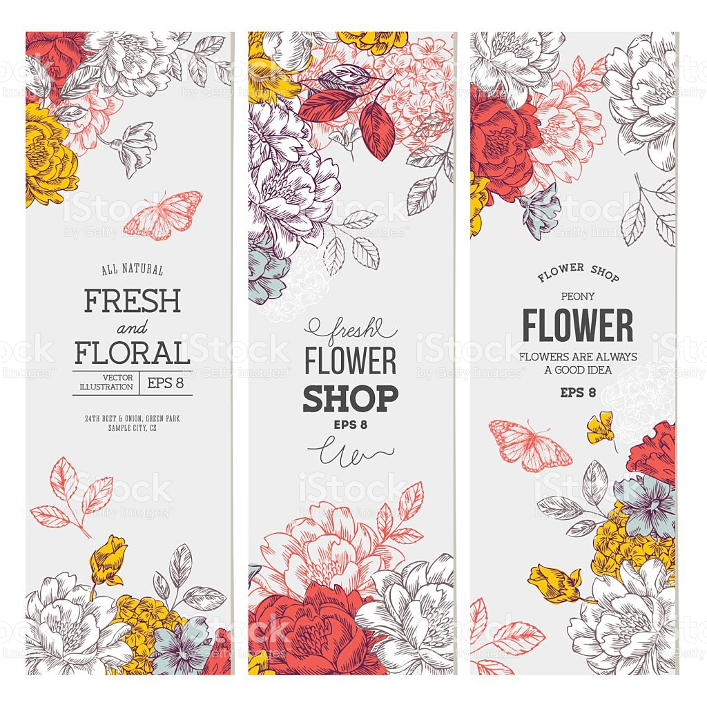 Graphic floral images png library library Vintage Peony Flower Banner Collection Linear Graphic Floral ... png library library