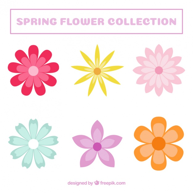 Graphic flower pictures png transparent Flower Vectors, Photos and PSD files | Free Download png transparent