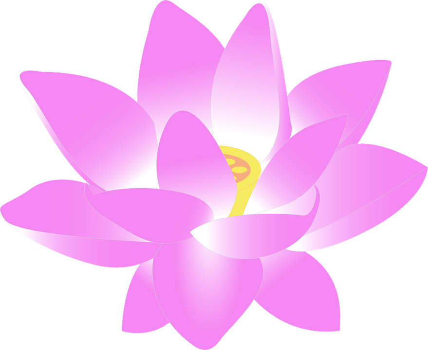 Graphic flower pictures svg freeuse Free vector graphic: Flower, Water Lily, Lily, Lotus - Free Image ... svg freeuse