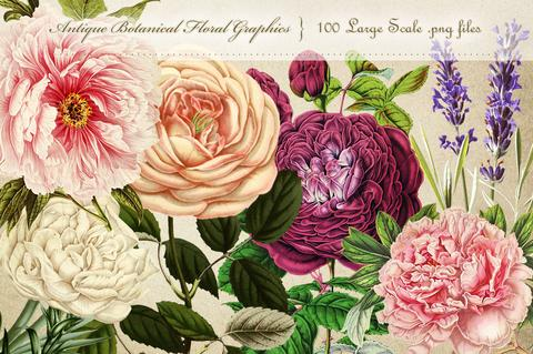 Graphics floral graphic freeuse library Flower Graphics – Avalon Rose Design graphic freeuse library