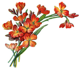 Graphics flower clipart royalty free library Graphics flowers pictures - ClipartFest clipart royalty free library