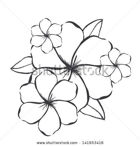 Graphics flowers banner free download Flowers Graphics Over White Background Vector Stock Vector ... banner free download