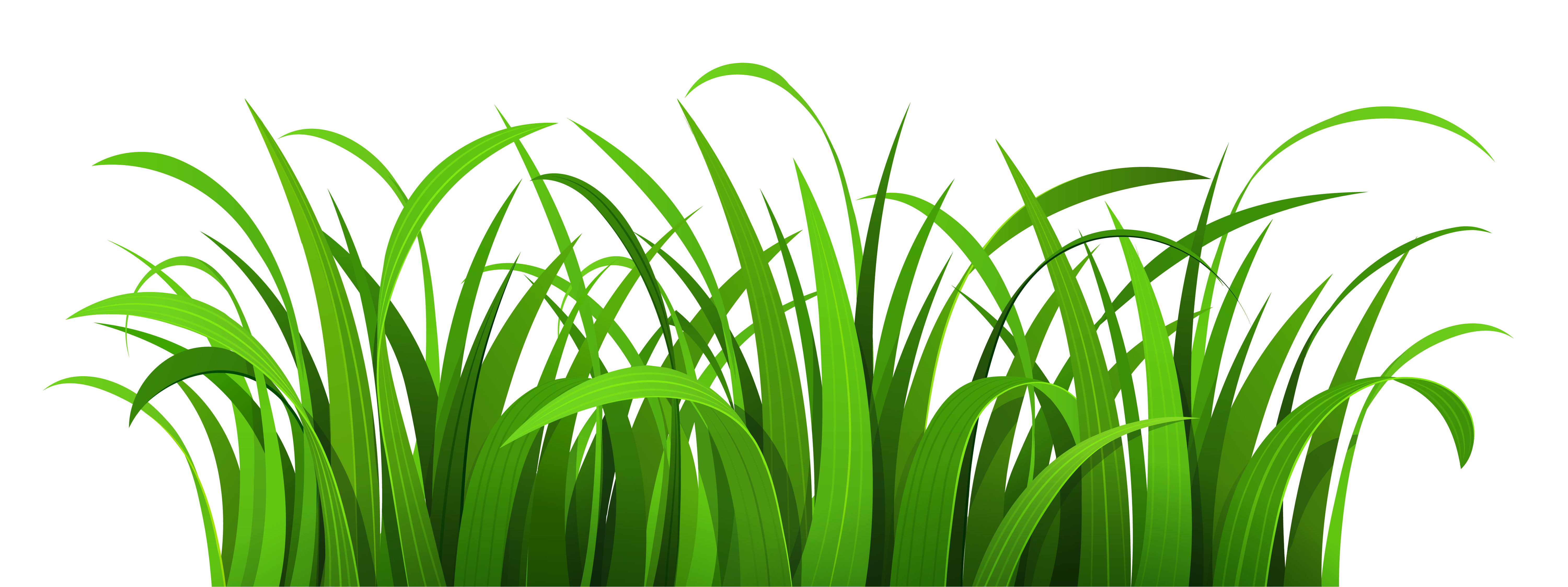 Gras clipart kostenlos clip royalty free library Gras clipart kostenlos - ClipartFest clip royalty free library
