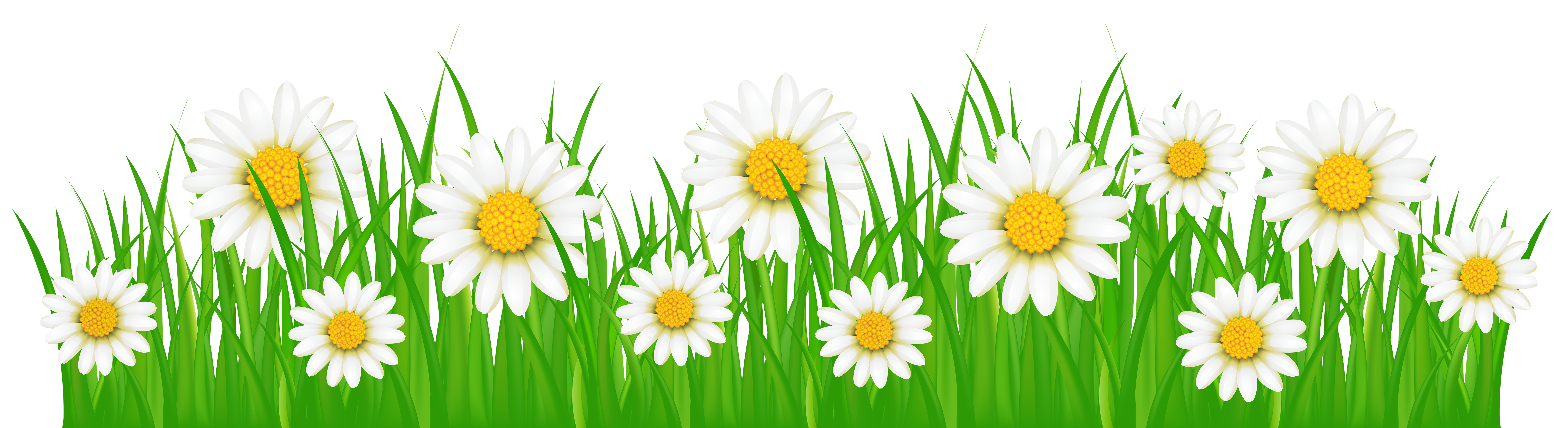 Flower and grass clipart clip art freeuse download Grass Ground with White Flowers PNG Clip Art Image clip art freeuse download