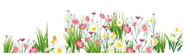 Grass and flowers clipart vector black and white library Flowers and Grass PNG Picture Clipart | Bordas | Pinterest ... vector black and white library