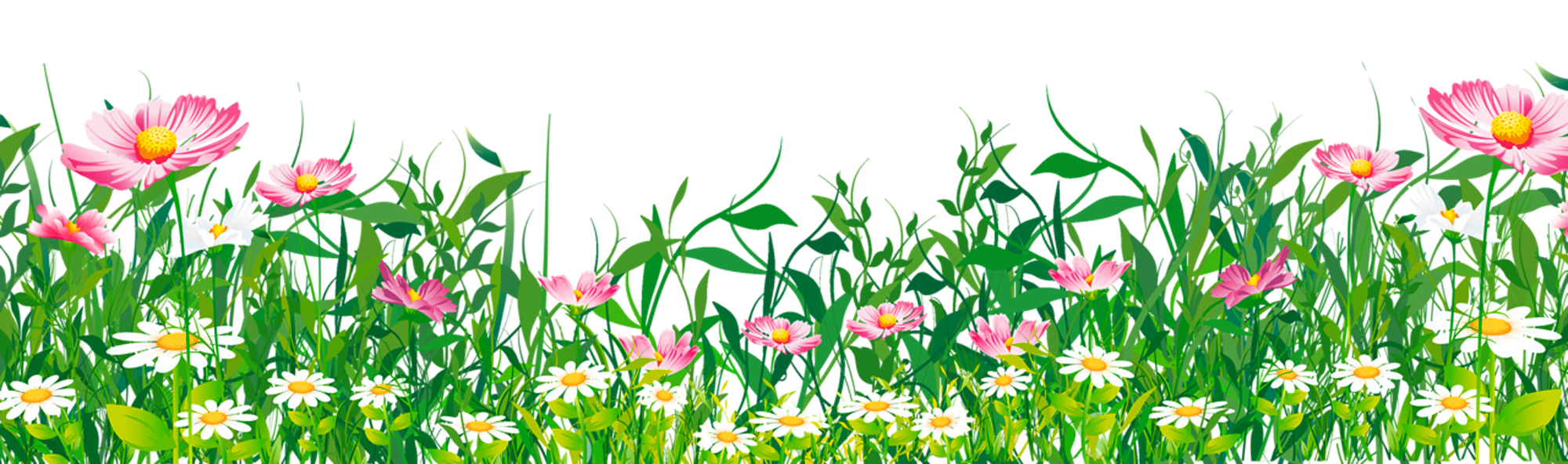 Flower meadow clipart. Grass with flowers png