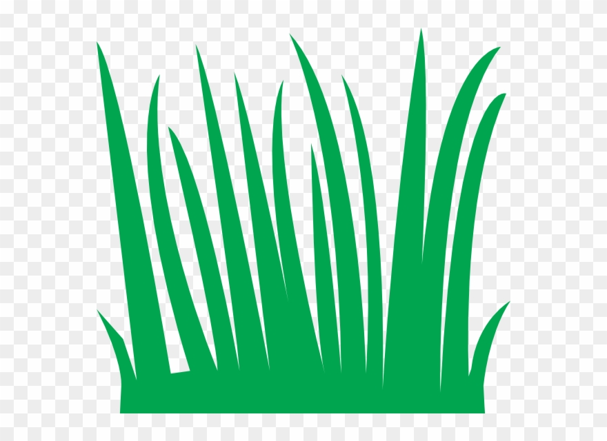 Grass blades clipart vector free stock Grass Clipart - Cartoon Blades Of Grass - Png Download (#3775 ... vector free stock