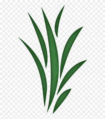Grass blades clipart download Free PNG Images & Free Vectors Graphics PSD Files - DLPNG.com download