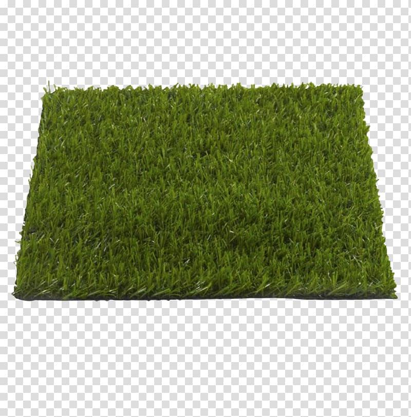 Grass carp clipart picture download Artificial turf Lawn Garden Furniture Plastic, grass carp ... picture download