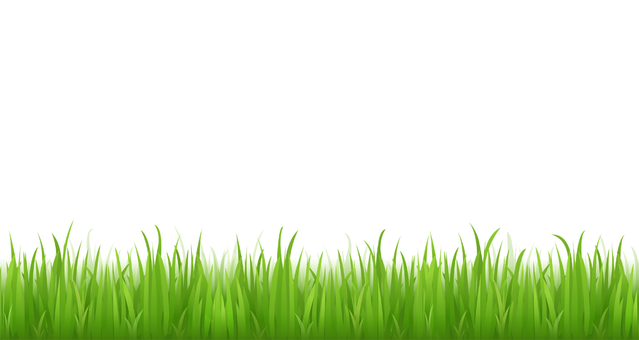 Grass clipart no background clip black and white Transparent Clipart Image Bottom grass png clipart - Free ... clip black and white