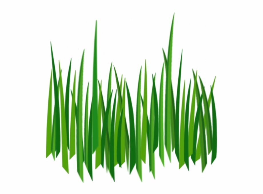Grass clipart no background svg royalty free download Cartoon Grass Transparent Background Free PNG Images & Clipart ... svg royalty free download