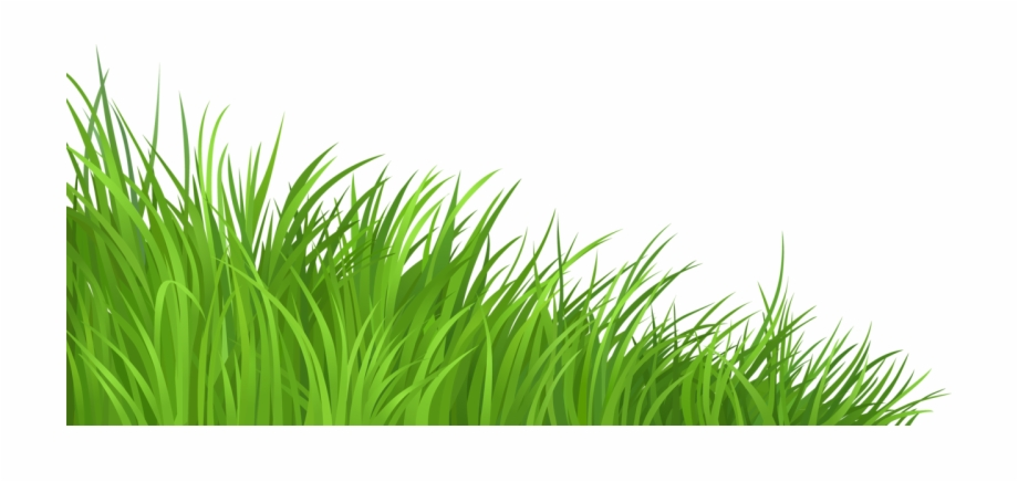 Grass clipart no background picture royalty free Grass Clipart Vegetation - Grass Transparent Background Png ... picture royalty free