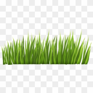 Grass clipart no background vector royalty free Download for free 10 PNG Lawn clipart transparent Images With ... vector royalty free