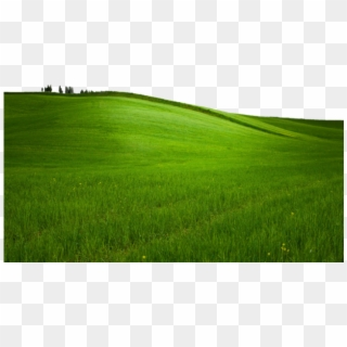 Grass field clipart image library download Grass Field PNG Images, Free Transparent Image Download - Pngix image library download