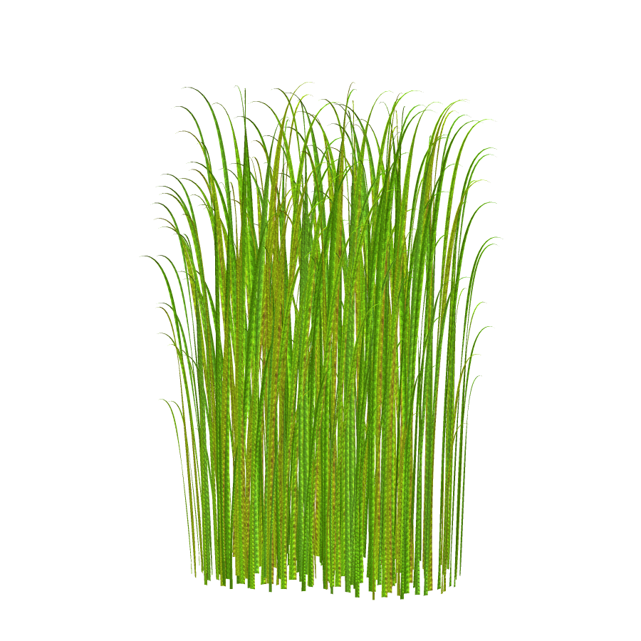 Grass graphic clipart vector freeuse Grass graphic clipart - ClipartFest vector freeuse