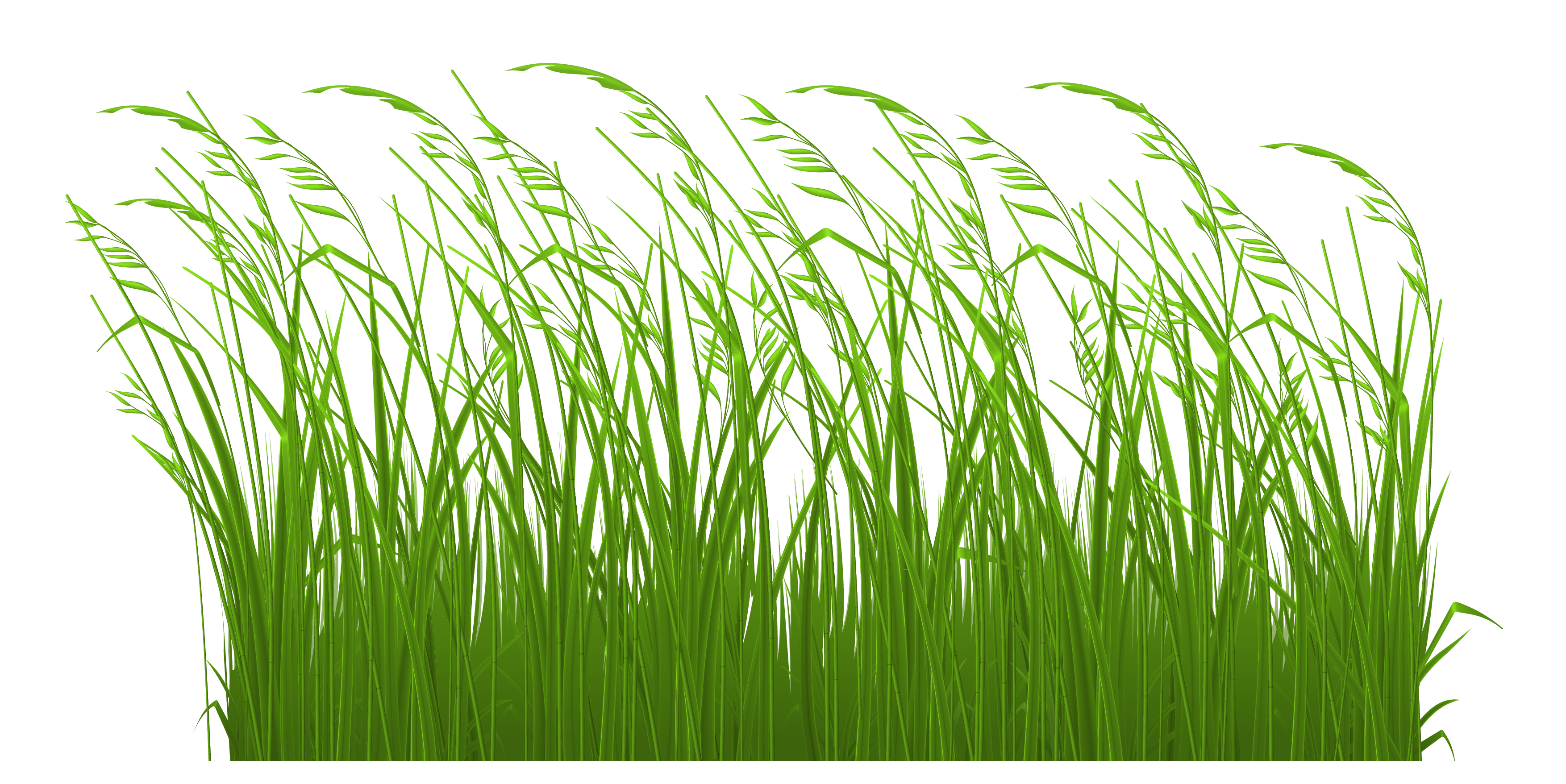 Grass graphic clipart image royalty free download Free Grass Clip Art Pictures - Clipartix image royalty free download