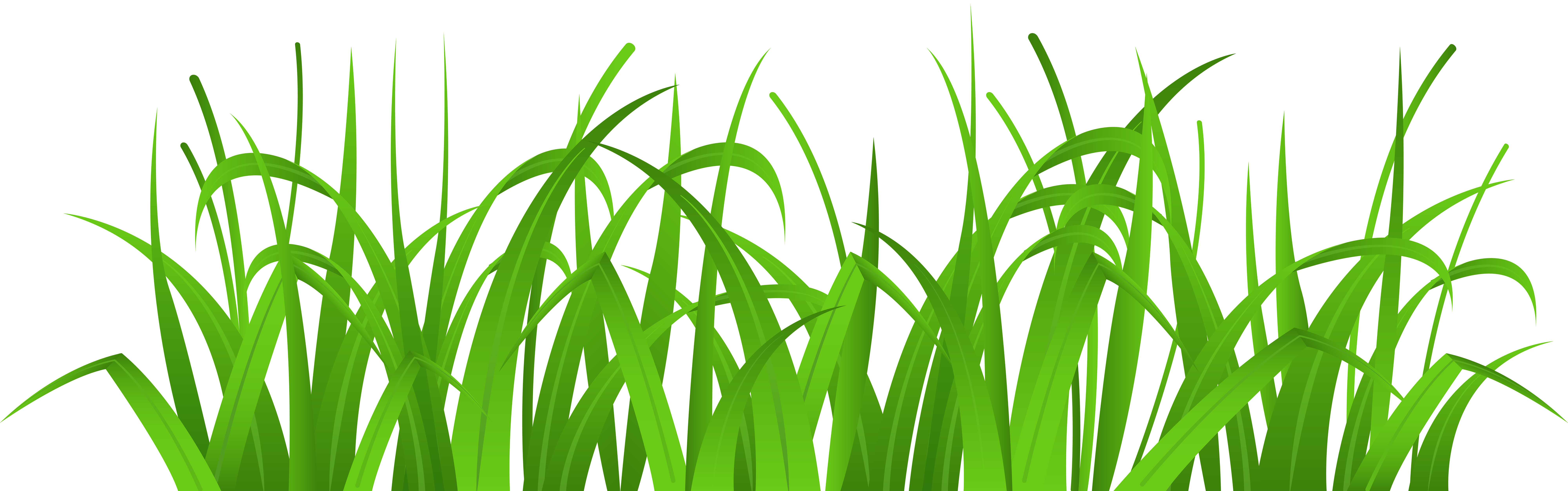 Bamboo clipart money svg library Grass Cover PNG Clip Art - Best WEB Clipart svg library