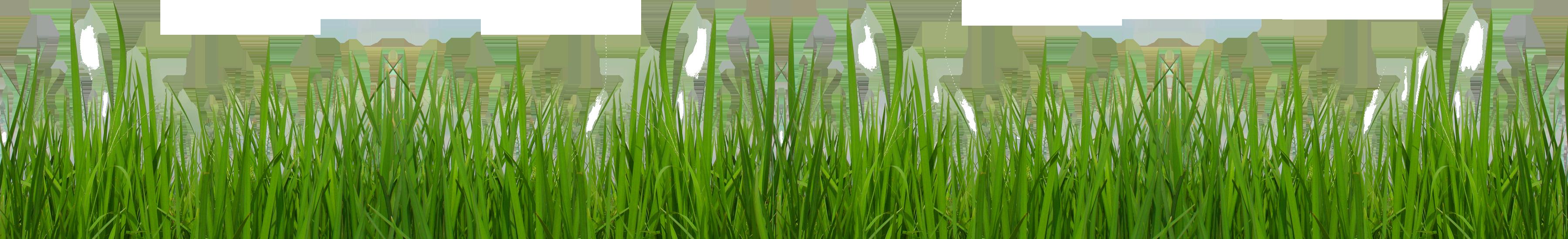 Grass graphic clipart graphic transparent download Grass Clipart graphic transparent download