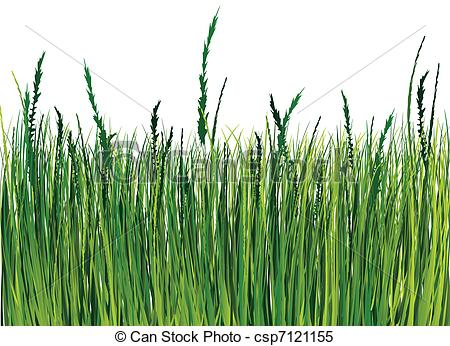 Grass graphic clipart png black and white Clipart Vector of Grass illustration - Grass illustration ... png black and white